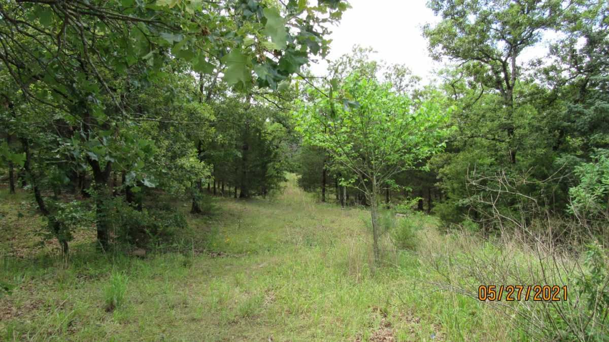 land, ranch, recreational, hunting, oklahoma, cabin | 413211 E 1873 Rd Antlers, OK 74523 3