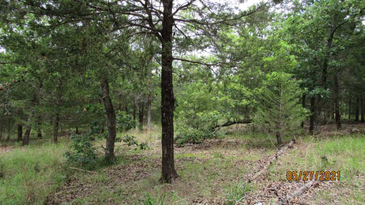 land, ranch, recreational, hunting, oklahoma, cabin | 413211 E 1873 Rd Antlers, OK 74523 19