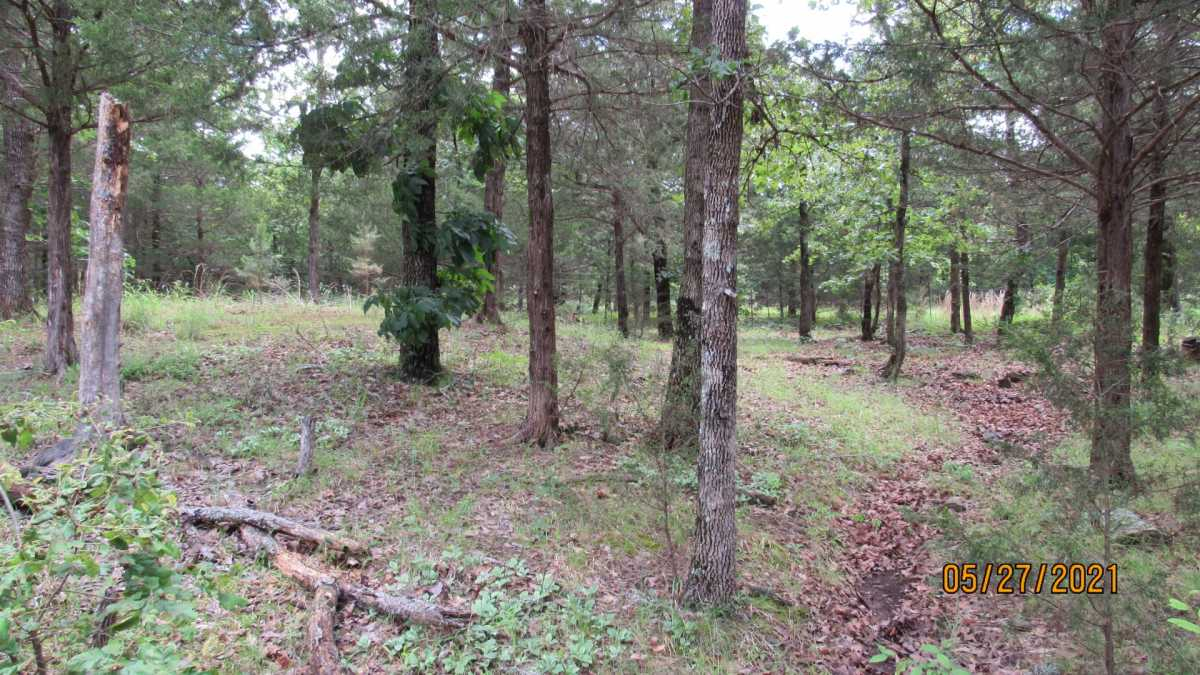 land, ranch, recreational, hunting, oklahoma, cabin | 413211 E 1873 Rd Antlers, OK 74523 20