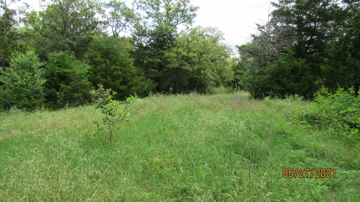 land, ranch, recreational, hunting, oklahoma, cabin | 413211 E 1873 Rd Antlers, OK 74523 21