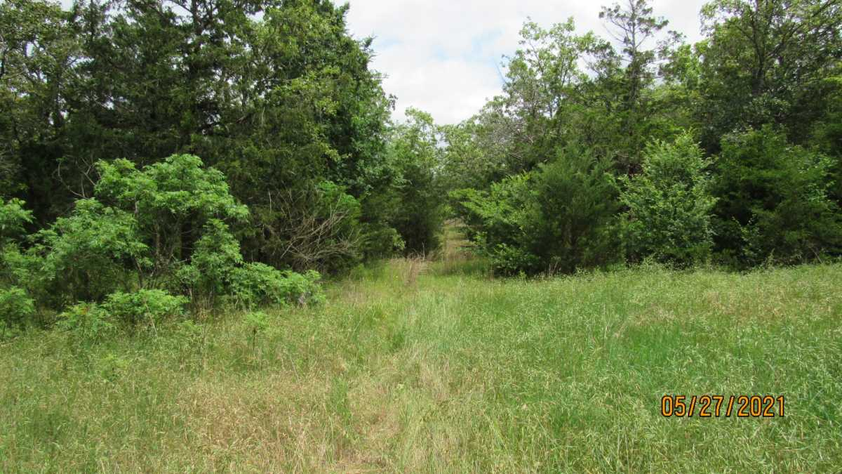 land, ranch, recreational, hunting, oklahoma, cabin | 413211 E 1873 Rd Antlers, OK 74523 22