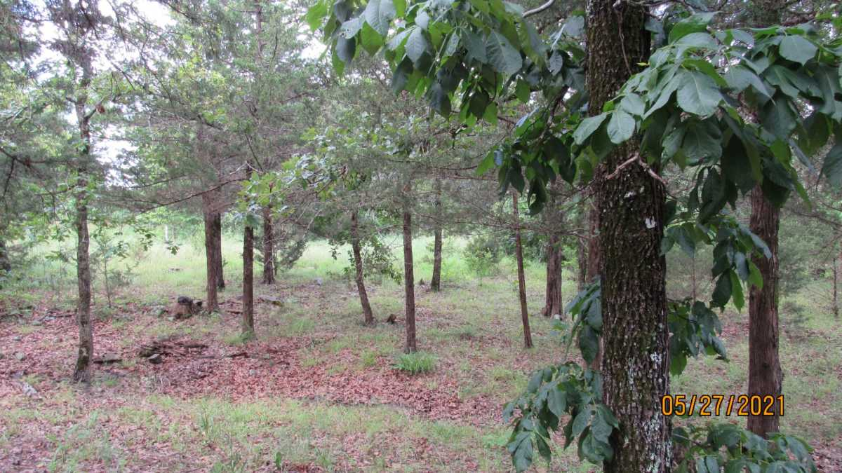 land, ranch, recreational, hunting, oklahoma, cabin | 413211 E 1873 Rd Antlers, OK 74523 2