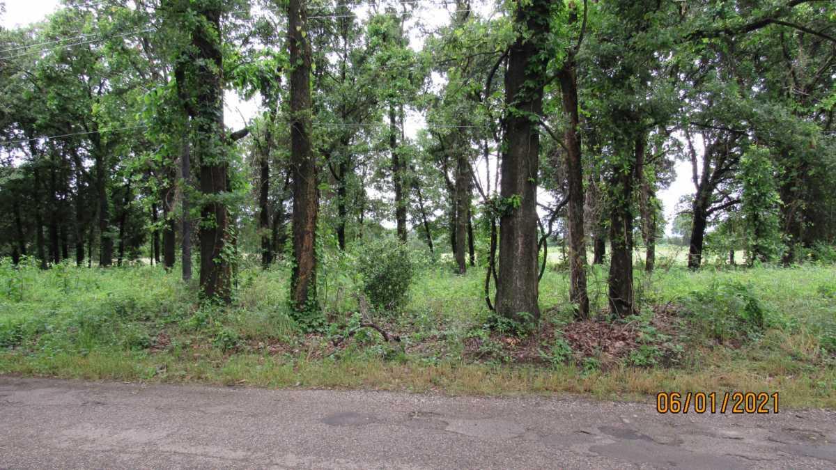 land, ranch, recreational, hunting, oklahoma, cabin | 000 Davis Acres Rd Cartwright, OK 74733 0