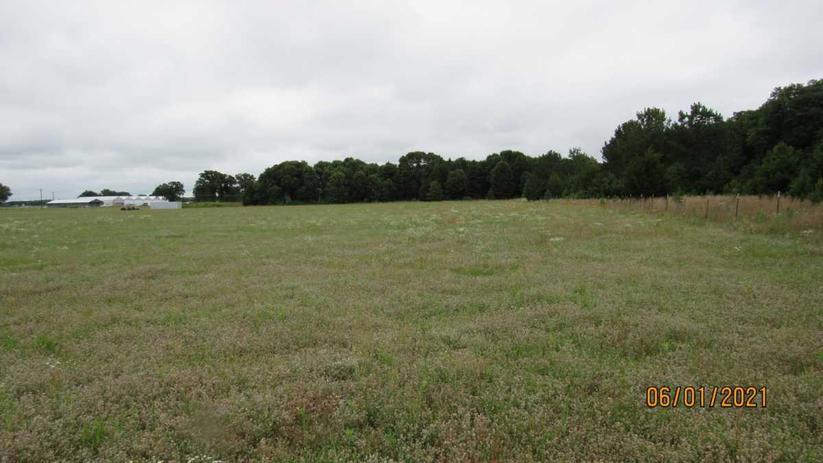 land, ranch, recreational, hunting, oklahoma, cabin | 000 Davis Acres Rd Cartwright, OK 74733 9