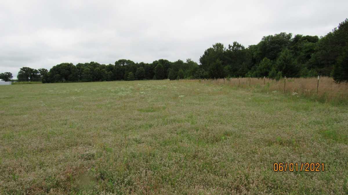 land, ranch, recreational, hunting, oklahoma, cabin | 000 Davis Acres Rd Cartwright, OK 74733 10