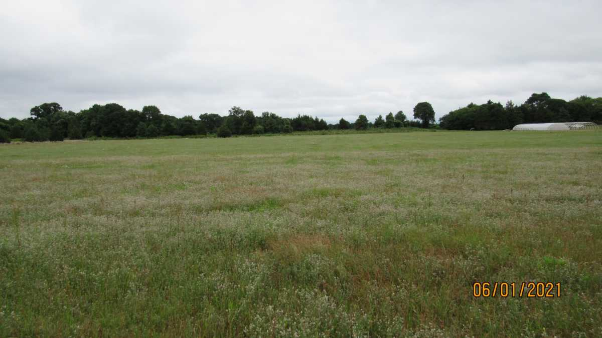 land, ranch, recreational, hunting, oklahoma, cabin | 000 Davis Acres Rd Cartwright, OK 74733 15