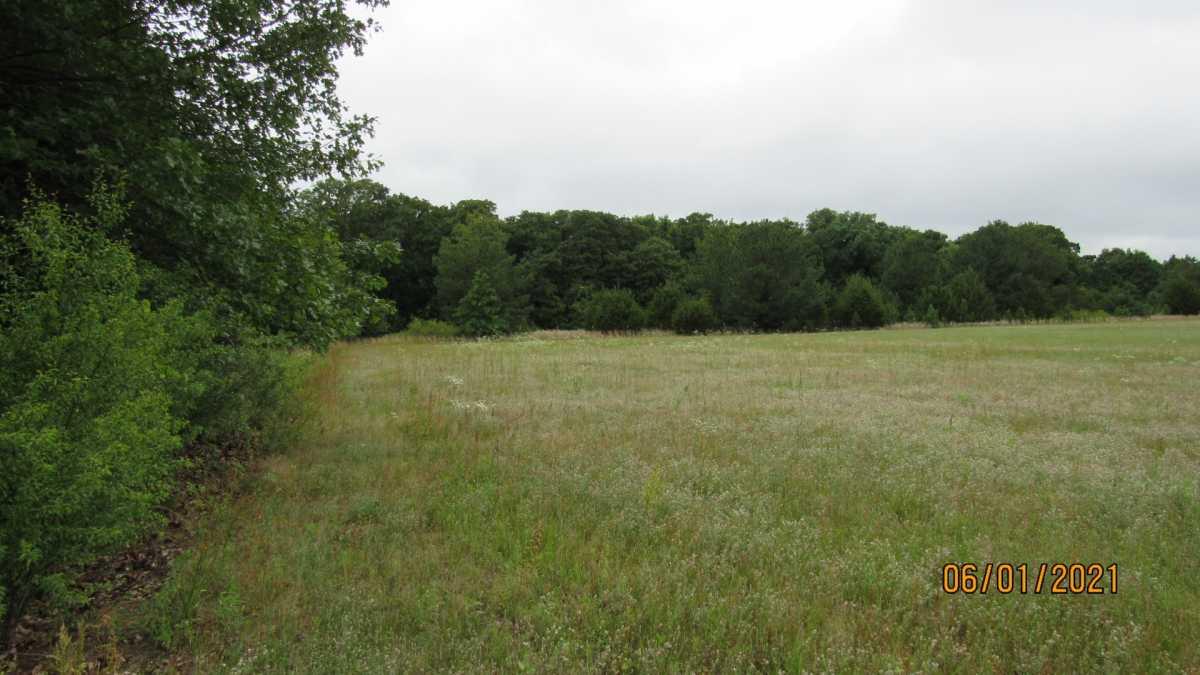 land, ranch, recreational, hunting, oklahoma, cabin | 000 Davis Acres Rd Cartwright, OK 74733 18