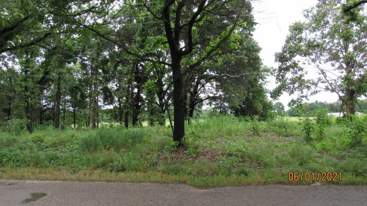 land, ranch, recreational, hunting, oklahoma, cabin | 000 Davis Acres Rd Cartwright, OK 74733 1