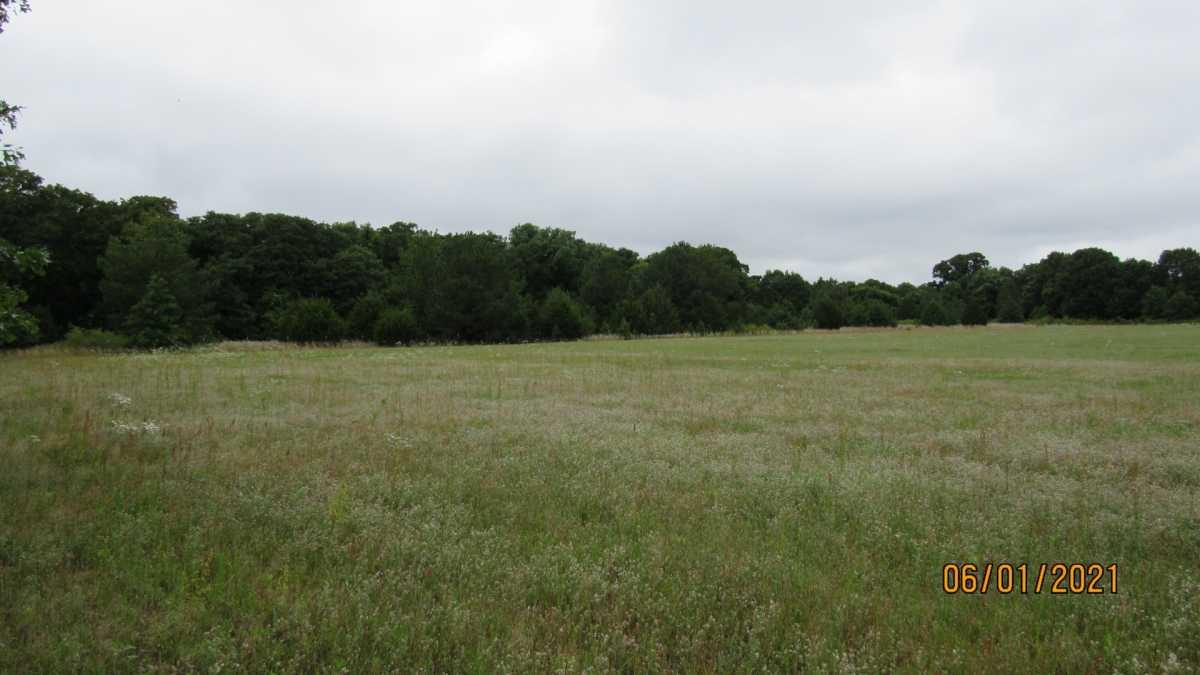 land, ranch, recreational, hunting, oklahoma, cabin | 000 Davis Acres Rd Cartwright, OK 74733 19