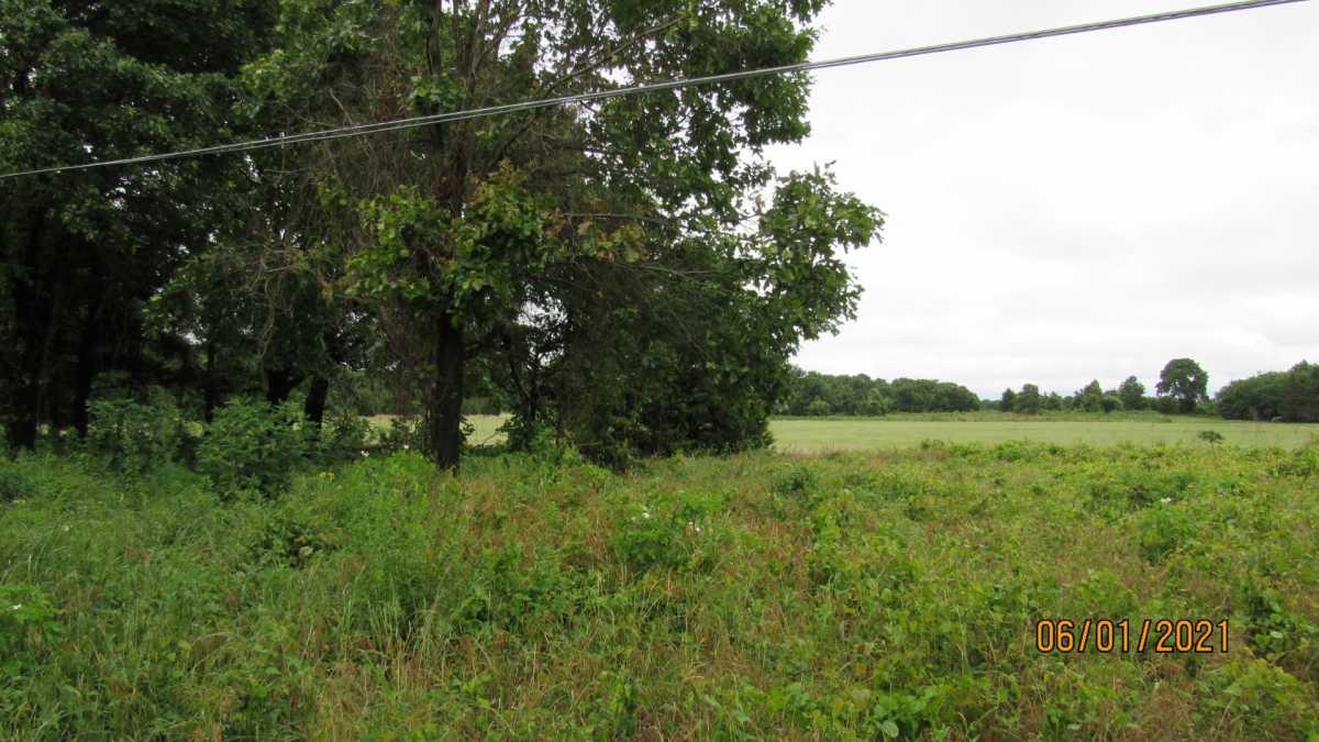 land, ranch, recreational, hunting, oklahoma, cabin | 000 Davis Acres Rd Cartwright, OK 74733 24