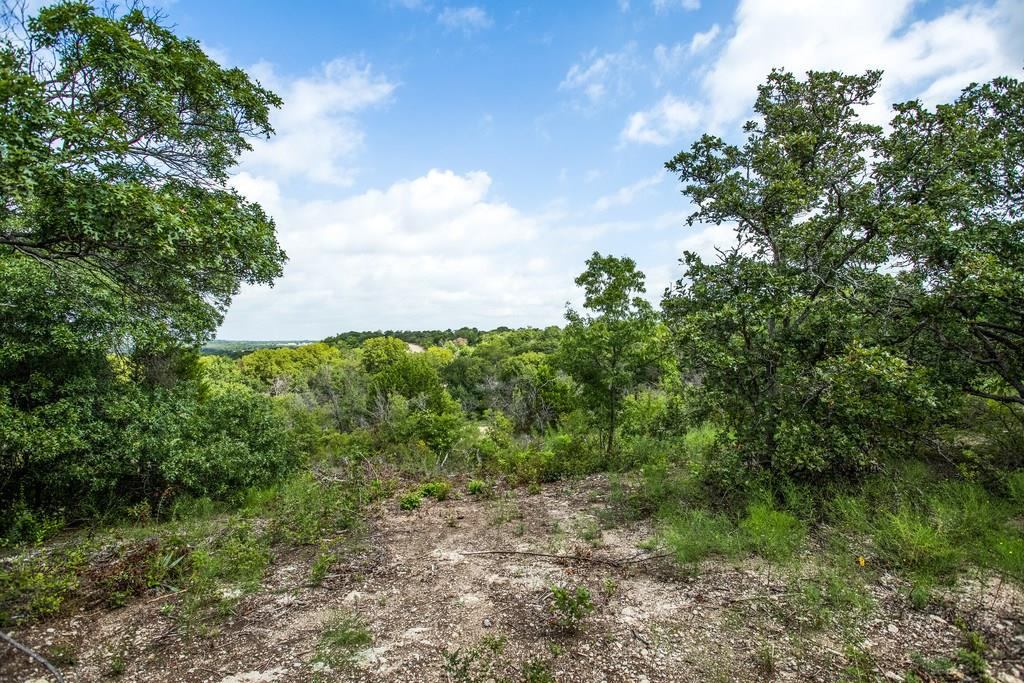 Active | Lot 6 Mastodon Way  Weatherford, TX 76085 3