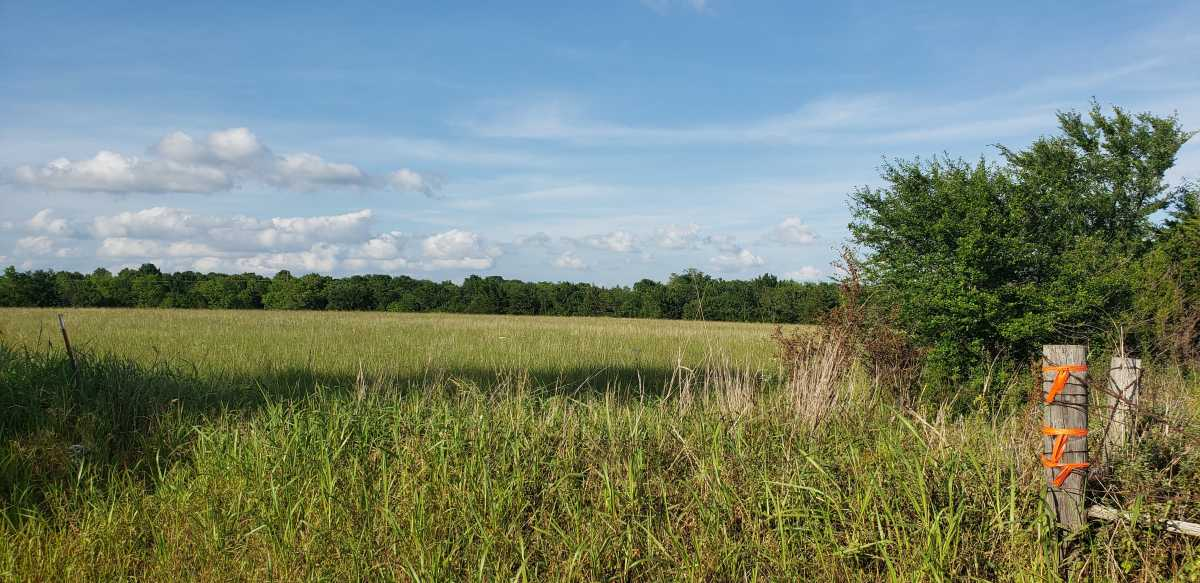 land, ranch, recreational, hunting, oklahoma, cabin   111110 N 3790 Rd - $40,000 * $80,000 * $240,000 Okemah, OK 74859 10