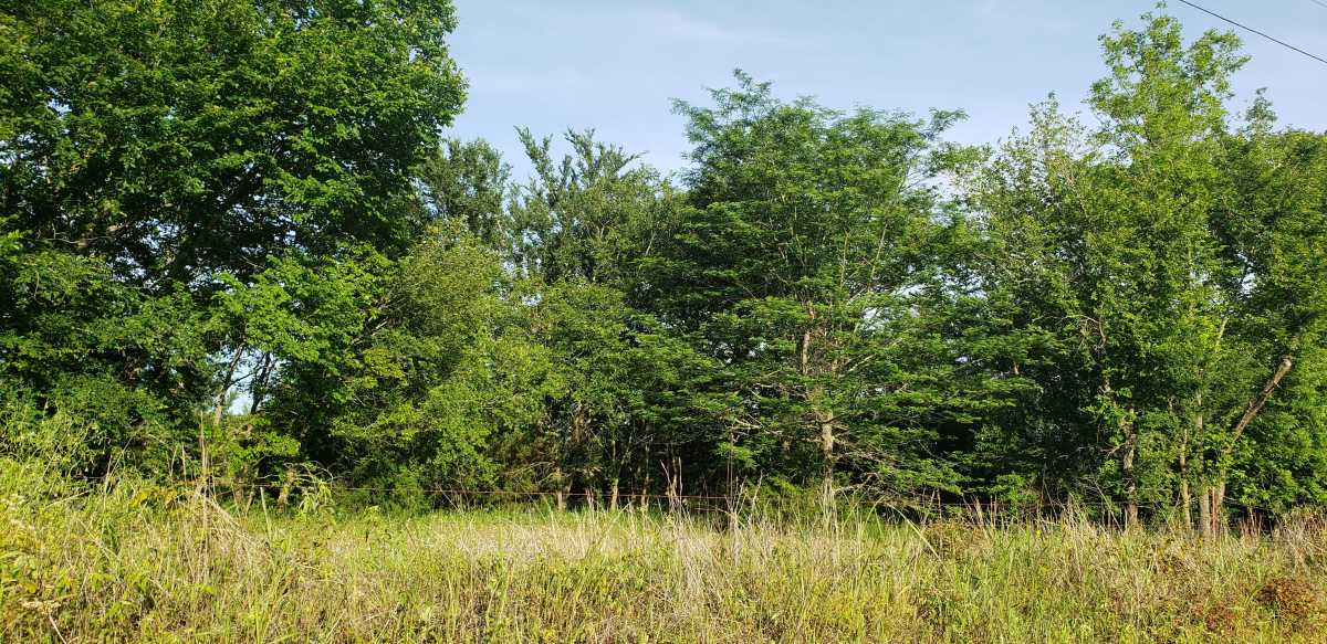 land, ranch, recreational, hunting, oklahoma, cabin   111110 N 3790 Rd - $40,000 * $80,000 * $240,000 Okemah, OK 74859 15