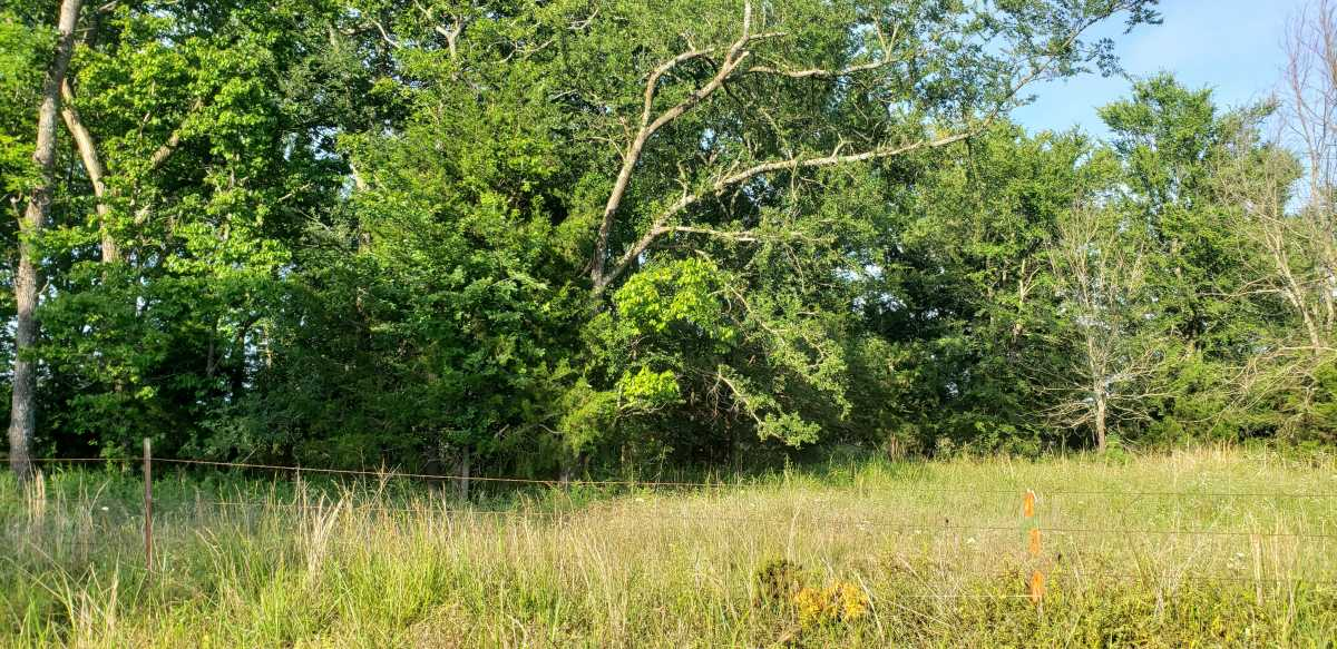 land, ranch, recreational, hunting, oklahoma, cabin   111110 N 3790 Rd - $40,000 * $80,000 * $240,000 Okemah, OK 74859 17