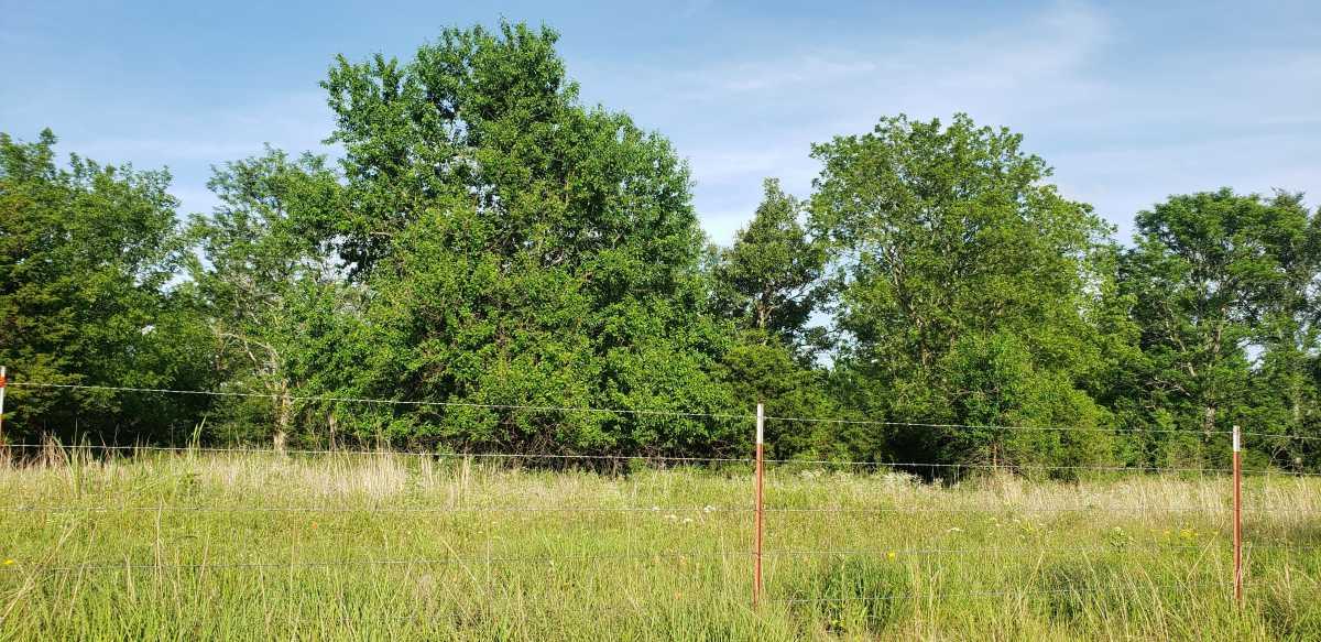 land, ranch, recreational, hunting, oklahoma, cabin   111110 N 3790 Rd - $40,000 * $80,000 * $240,000 Okemah, OK 74859 3