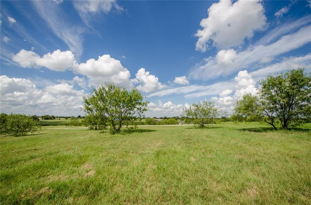 Sold Property | L 128 Lake Vista  Drive Streetman, TX 75859 9