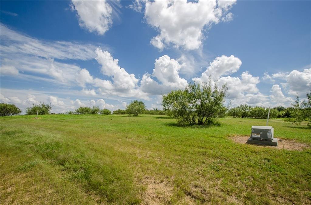 Sold Property | L 128 Lake Vista  Drive Streetman, TX 75859 10