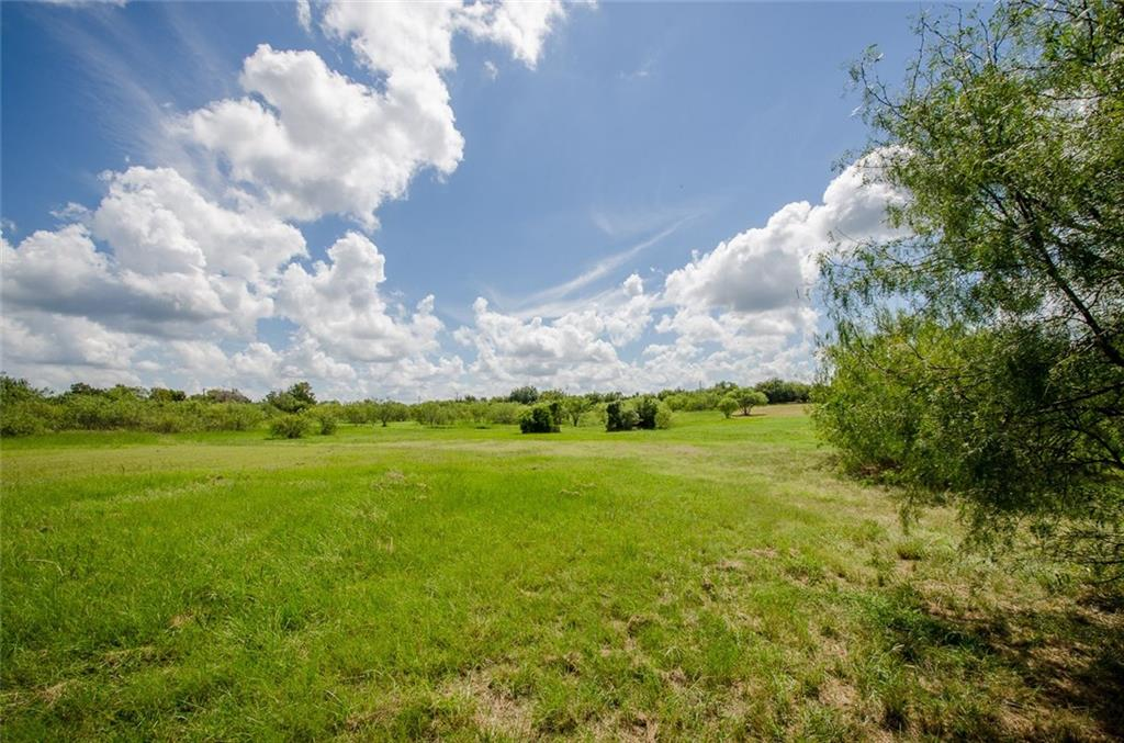 Sold Property | L 128 Lake Vista  Drive Streetman, TX 75859 12