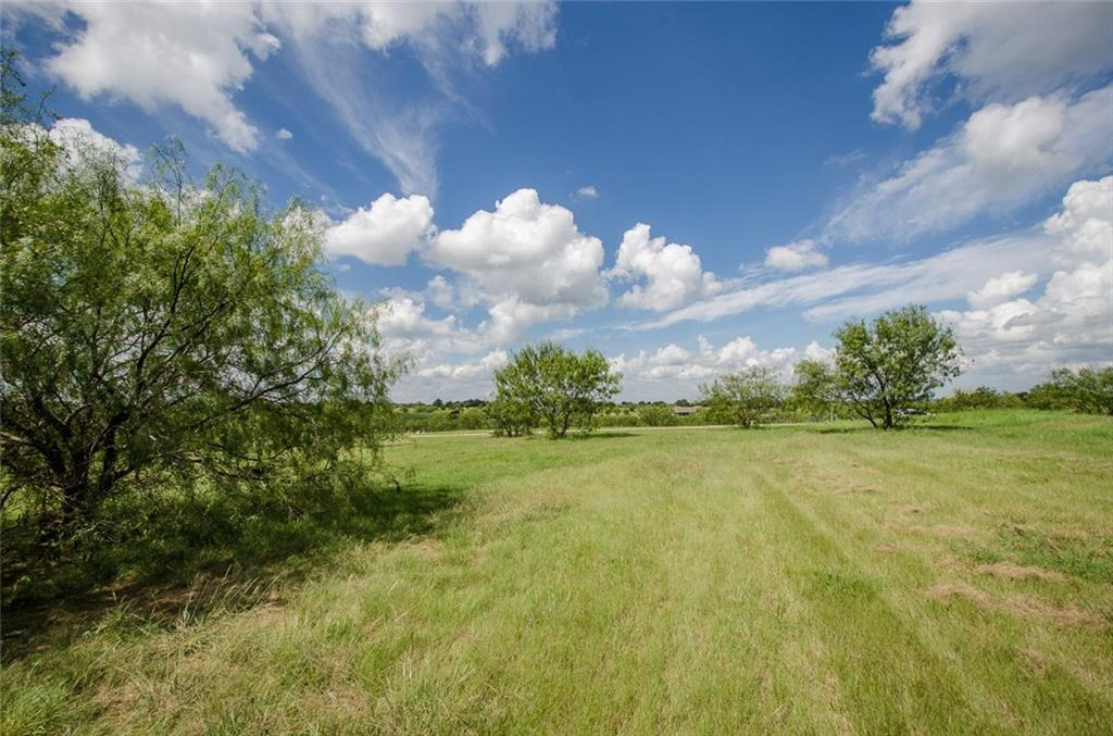 Sold Property | L 128 Lake Vista  Drive Streetman, TX 75859 13