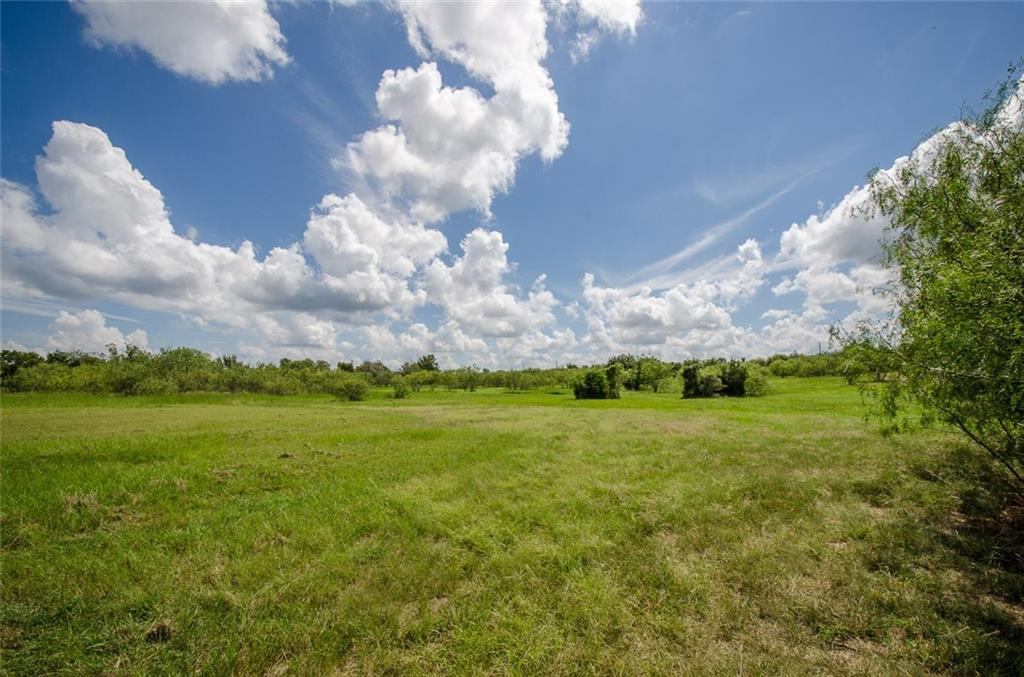 Sold Property | L 128 Lake Vista  Drive Streetman, TX 75859 14