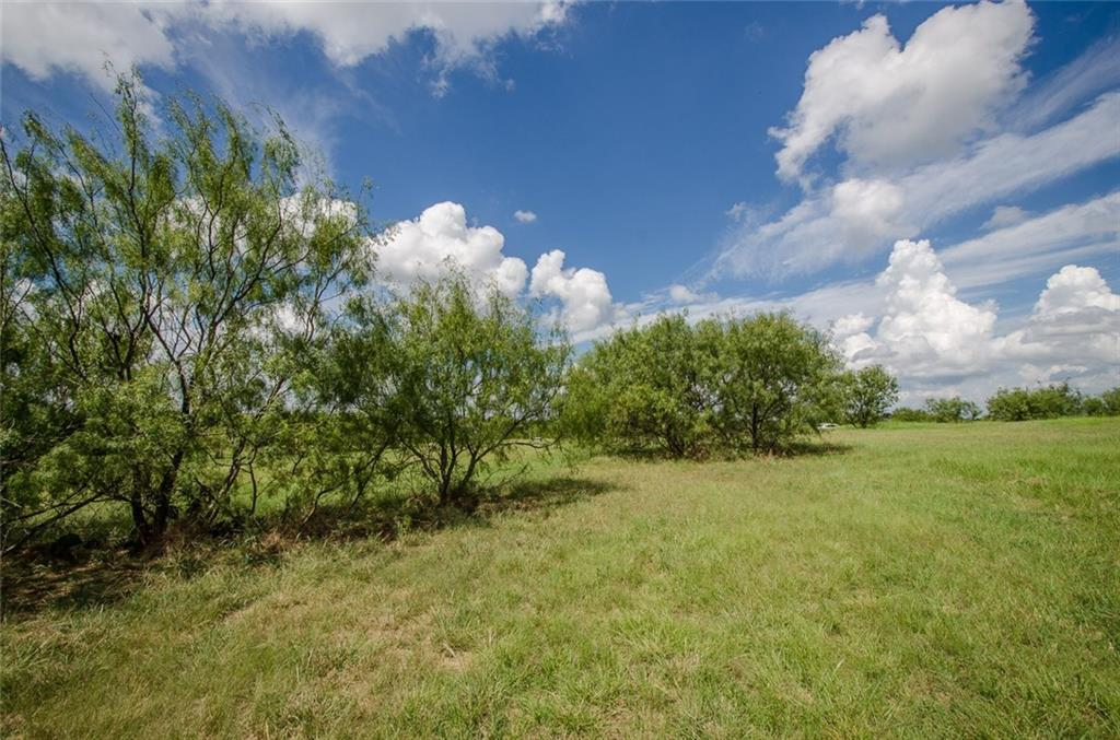 Sold Property | L 128 Lake Vista  Drive Streetman, TX 75859 15