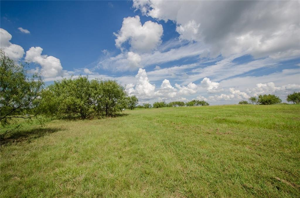 Sold Property | L 128 Lake Vista  Drive Streetman, TX 75859 16