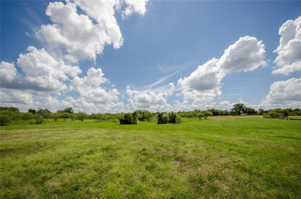 Sold Property | L 128 Lake Vista  Drive Streetman, TX 75859 17