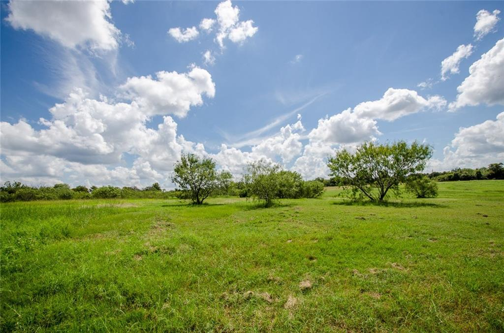 Sold Property | L 128 Lake Vista  Drive Streetman, TX 75859 1