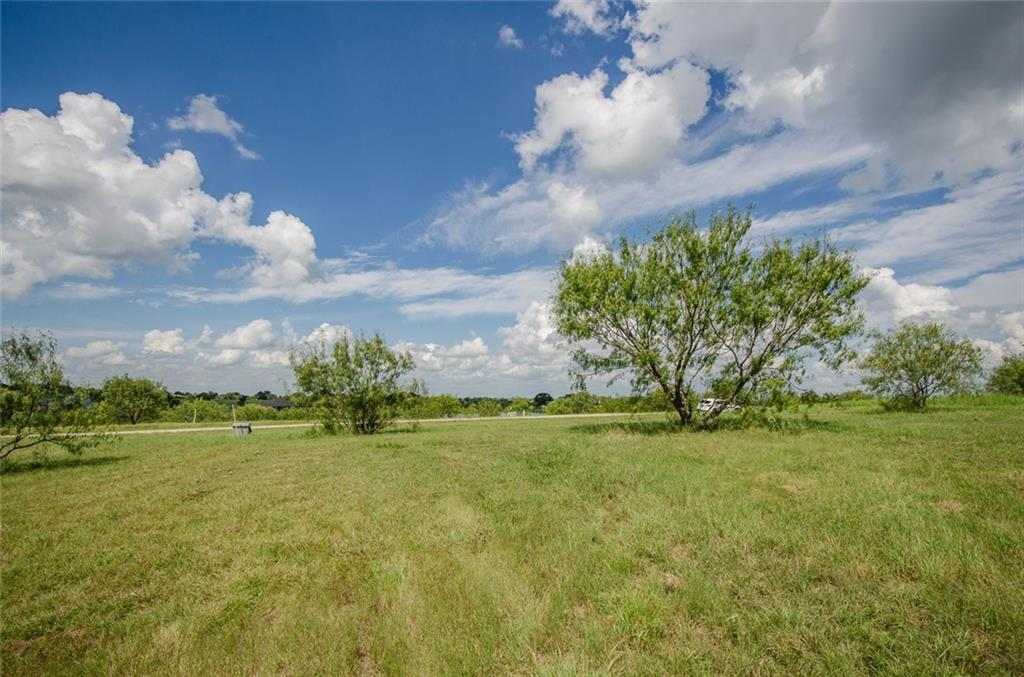 Sold Property | L 128 Lake Vista  Drive Streetman, TX 75859 19