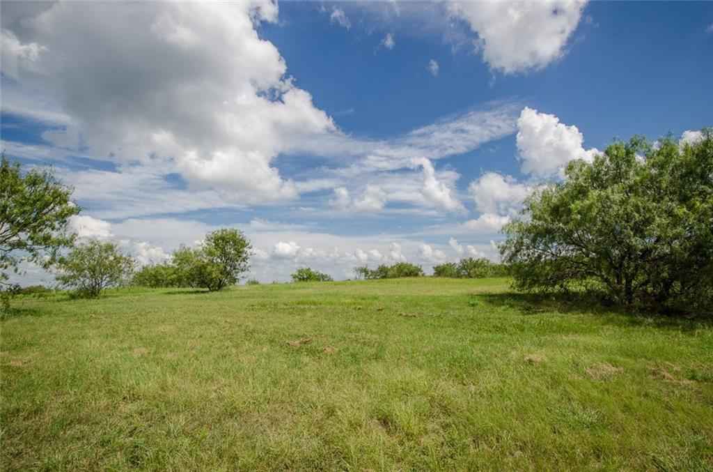 Sold Property | L 128 Lake Vista  Drive Streetman, TX 75859 20