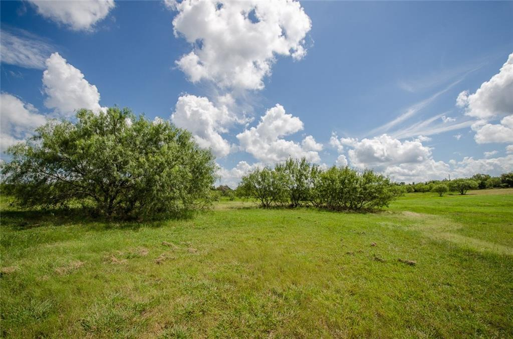 Sold Property | L 128 Lake Vista  Drive Streetman, TX 75859 21