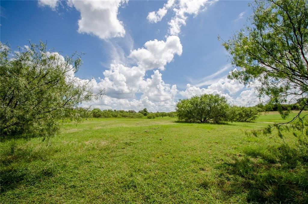 Sold Property | L 128 Lake Vista  Drive Streetman, TX 75859 4