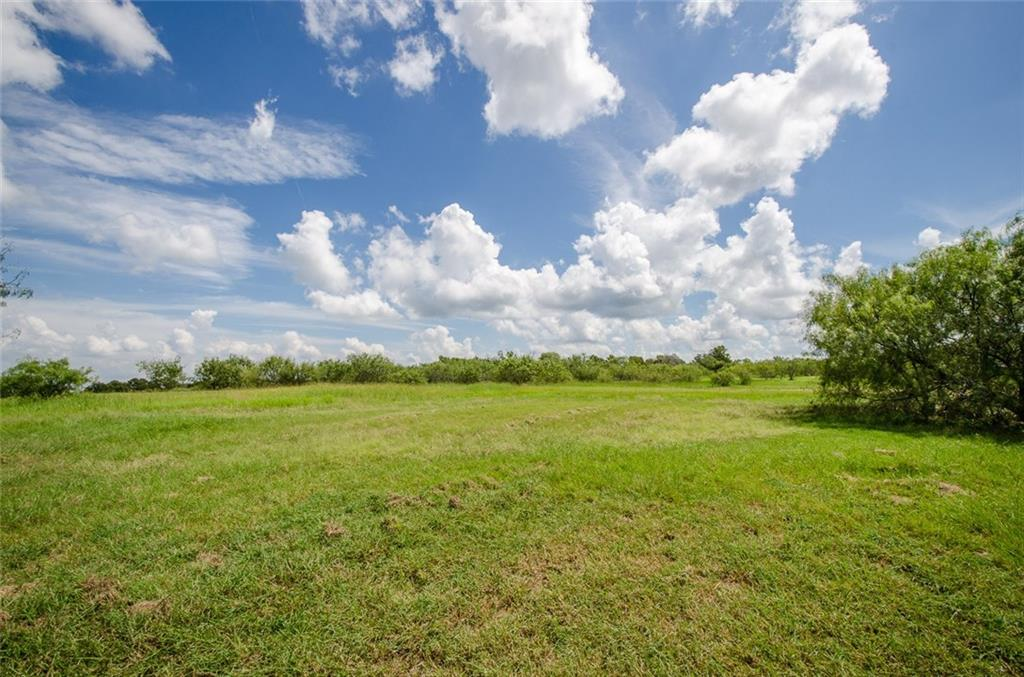 Sold Property | L 128 Lake Vista  Drive Streetman, TX 75859 7