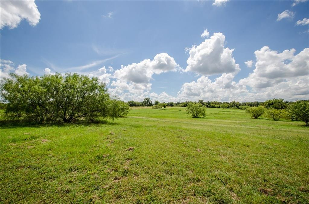 Sold Property | L 128 Lake Vista  Drive Streetman, TX 75859 8