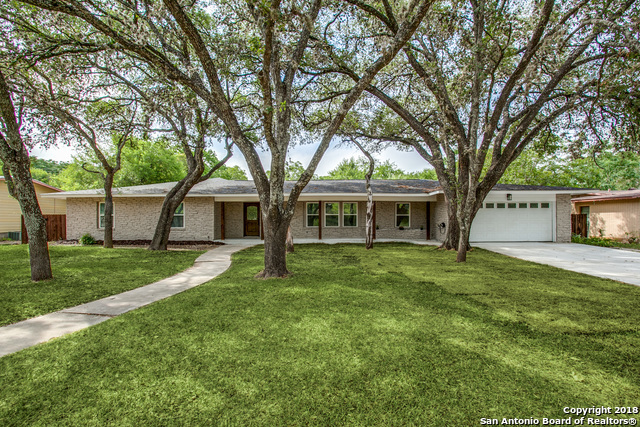 Active Option | 106 Roleto Drive  Castle Hills, TX 78213 1