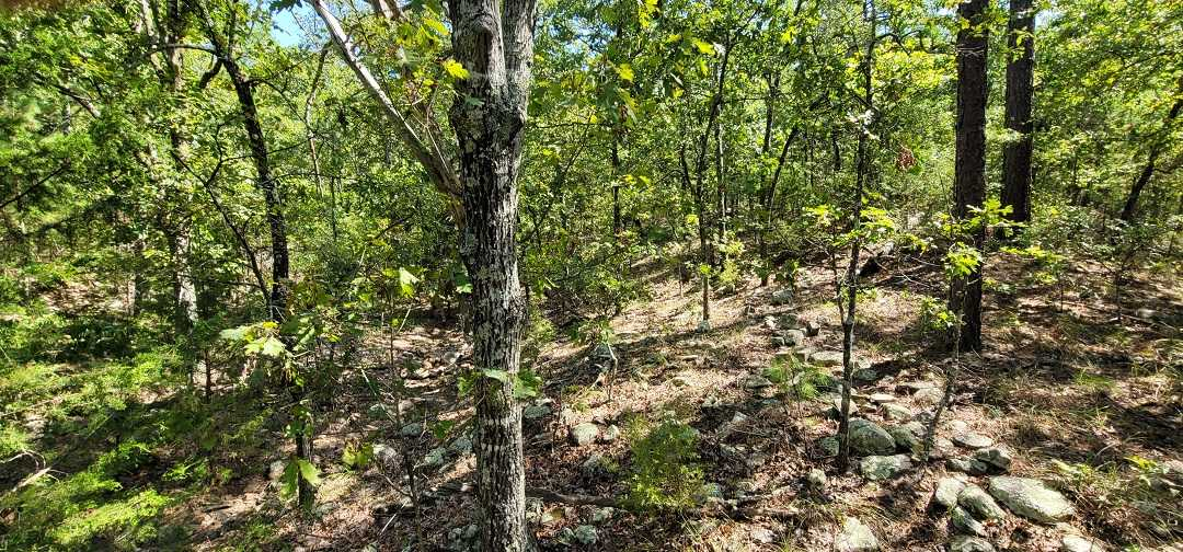 Active   20 ACRES OFF GRID HUNTING PARADISE Bengal, OK 74563 12