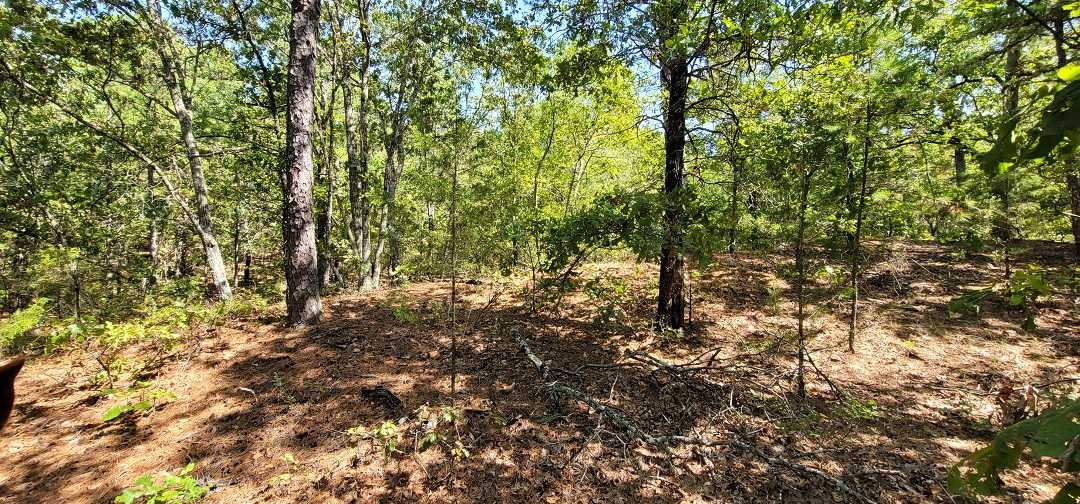 Active   20 ACRES OFF GRID HUNTING PARADISE Bengal, OK 74563 14
