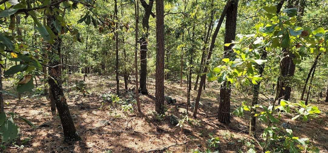 Active   20 ACRES OFF GRID HUNTING PARADISE Bengal, OK 74563 21