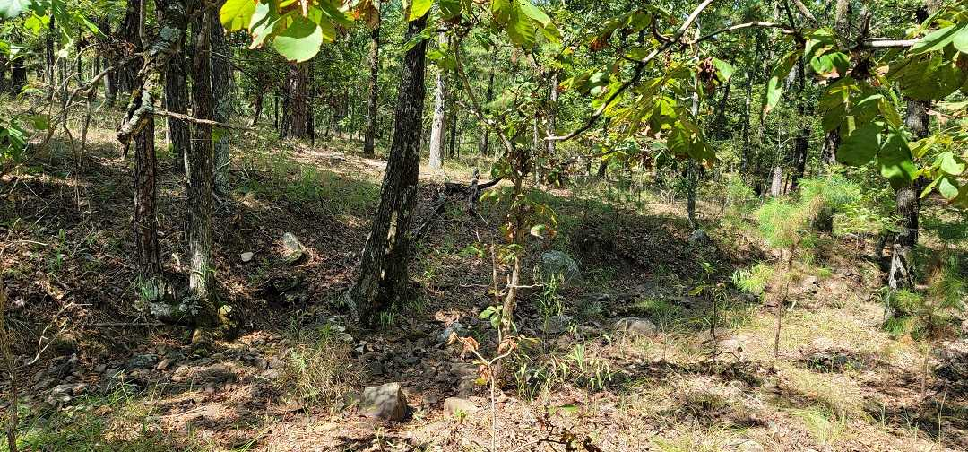 Active   20 ACRES OFF GRID HUNTING PARADISE Bengal, OK 74563 3