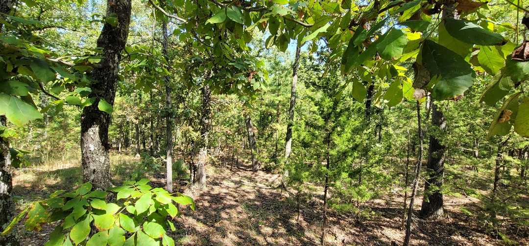 Active   20 ACRES OFF GRID HUNTING PARADISE Bengal, OK 74563 9