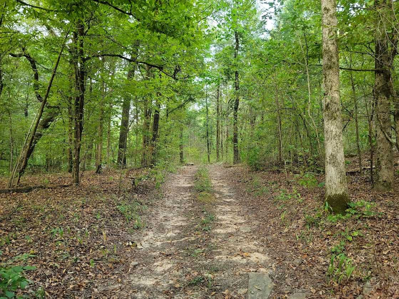 Land, Hunting land, Recreational Land, Oklahoma creek land | Kiamichi Wilderness Area Moyers, OK 74557 11