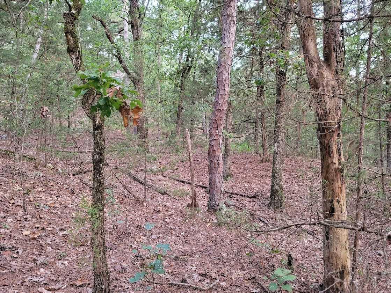 Land, Hunting land, Recreational Land, Oklahoma creek land | Kiamichi Wilderness Area Moyers, OK 74557 14