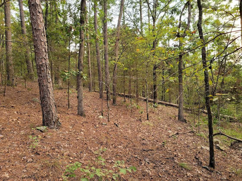 Land, Hunting land, Recreational Land, Oklahoma creek land | Kiamichi Wilderness Area Moyers, OK 74557 16