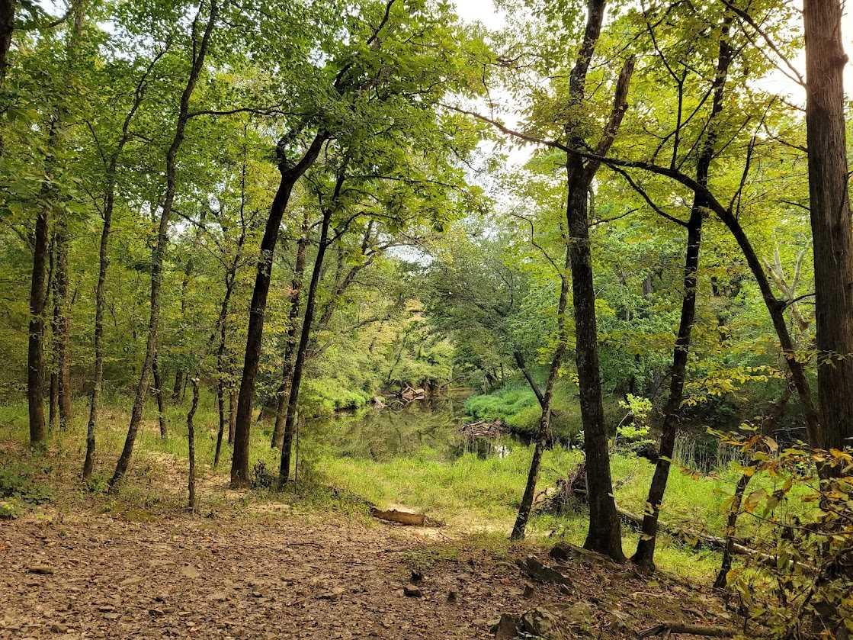 Land, Hunting land, Recreational Land, Oklahoma creek land | Kiamichi Wilderness Area Moyers, OK 74557 17