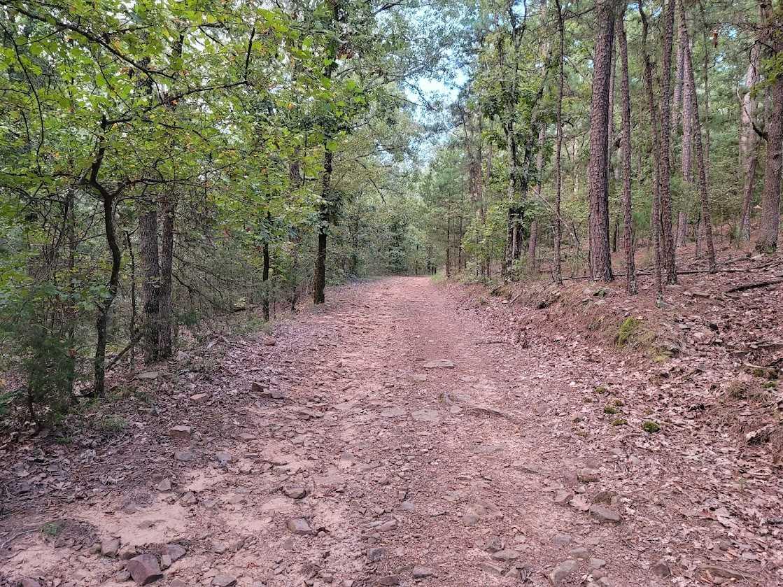 Land, Hunting land, Recreational Land, Oklahoma creek land | Kiamichi Wilderness Area Moyers, OK 74557 18