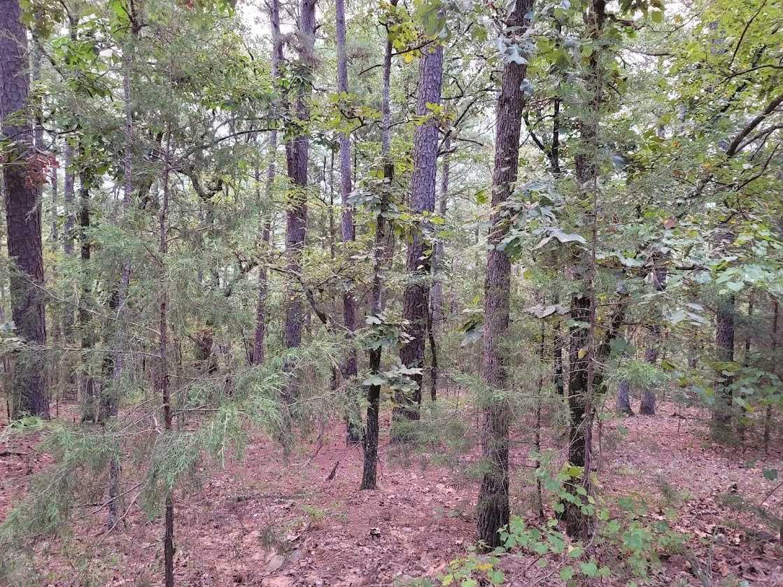 Land, Hunting land, Recreational Land, Oklahoma creek land | Kiamichi Wilderness Area Moyers, OK 74557 19