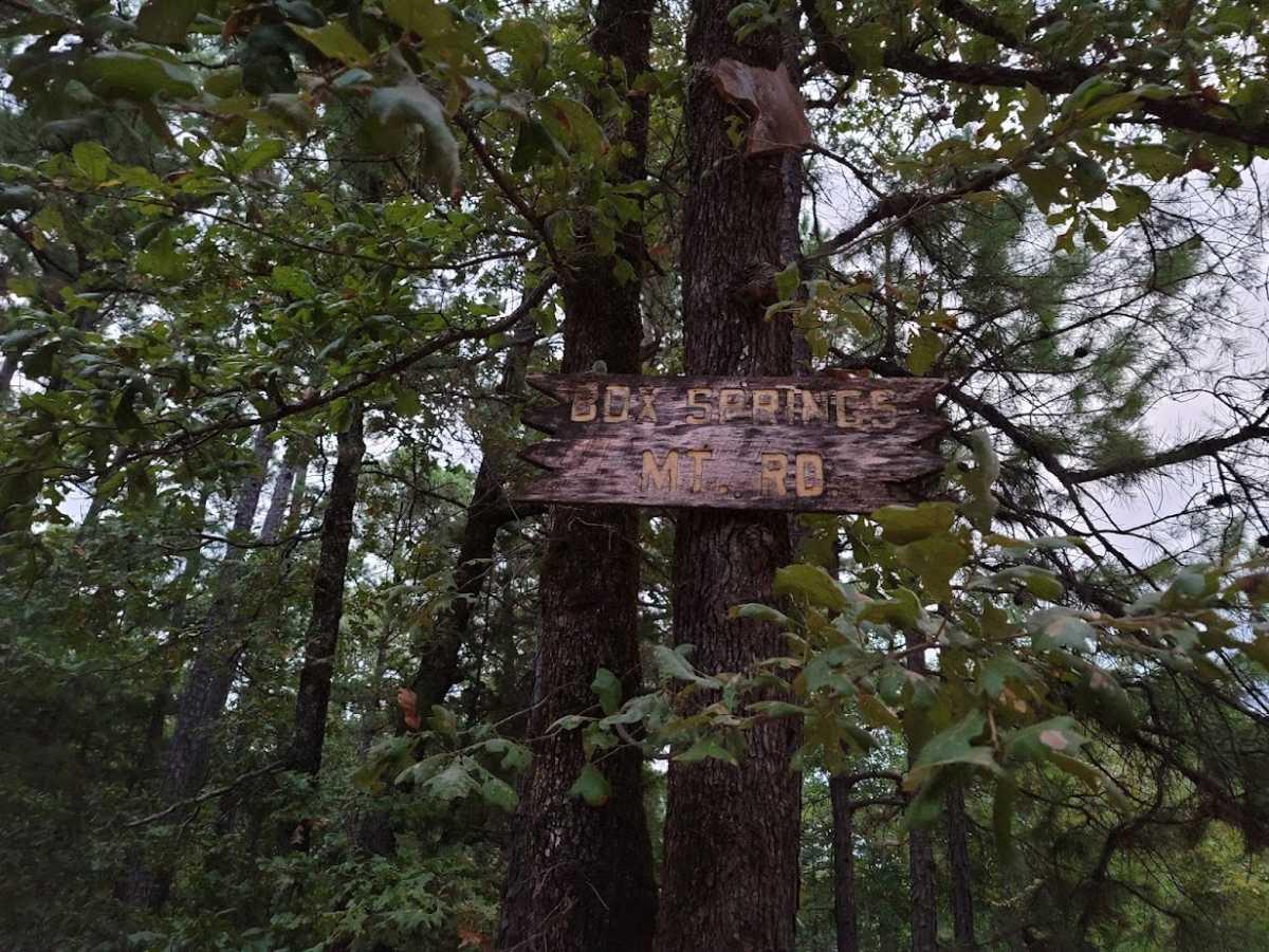 Land, Hunting land, Recreational Land, Oklahoma creek land | Kiamichi Wilderness Area Moyers, OK 74557 22