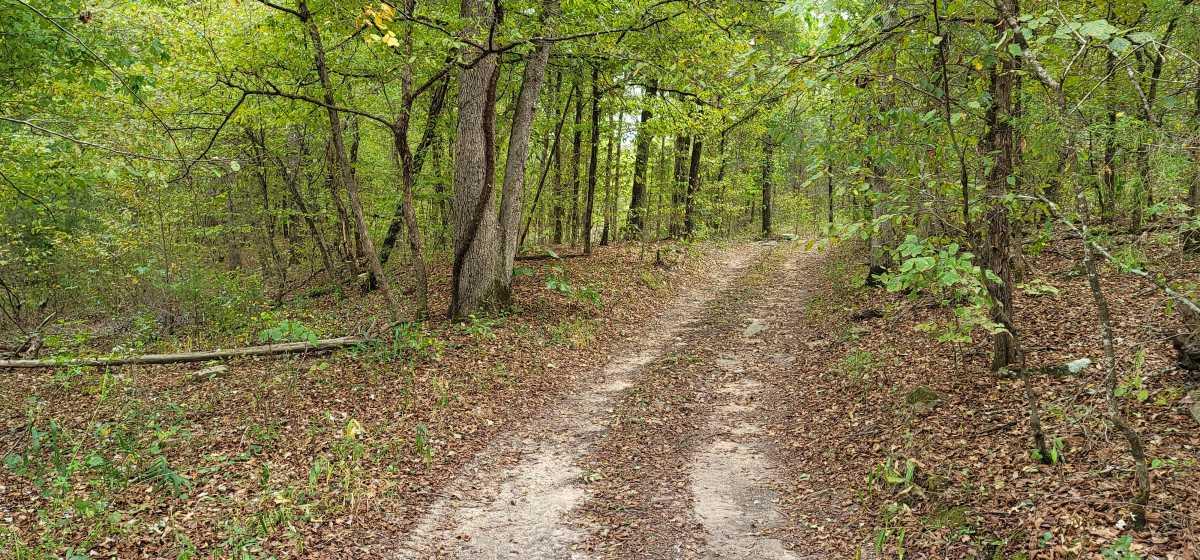 Land, Hunting land, Recreational Land, Oklahoma creek land | Kiamichi Wilderness Area Moyers, OK 74557 3