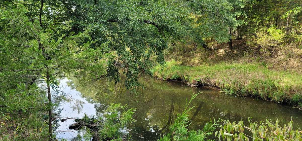 Land, Hunting land, Recreational Land, Oklahoma creek land | Kiamichi Wilderness Area Moyers, OK 74557 4