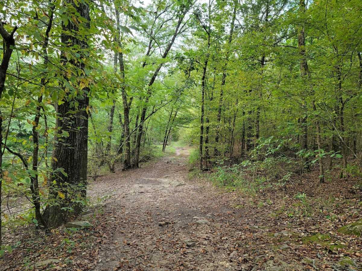 Land, Hunting land, Recreational Land, Oklahoma creek land | Kiamichi Wilderness Area Moyers, OK 74557 8